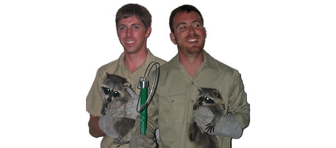 Lakeland Animal Removal - Rodent, Snake, Amradillo Control